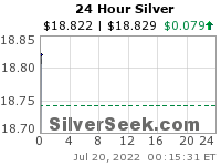 24 Hour Silver