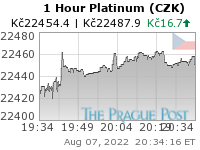 Platinum (CZK) 1 Hour
